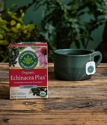 image of Echinacea Plus® Elderberry