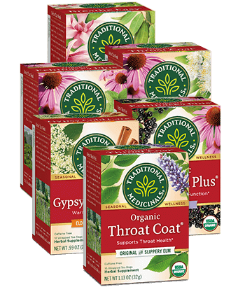image of Seasonal Teas Variety 6-Pack